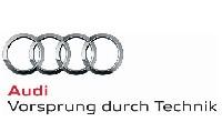 Werbekampagne Audi Nachtsichtassistent