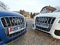 spontanes Shooting - Flo 1991 & WINMAN - Audi S3 8P vs Audi S5 8T