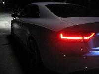 A5 - Nachtschwärmer - Foto nachgestellt
