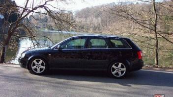 TINTIN -Audi A4 Avant