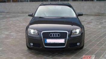 pelsi -Audi A3