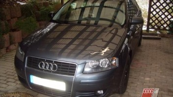 Starguthaben -Audi A3