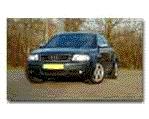 nietrijker -Audi S6