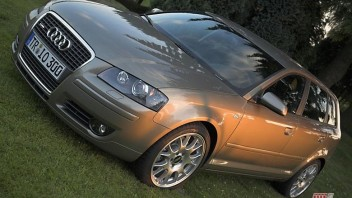 Pingolin -Audi A3