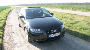 plasmodium -Audi A3