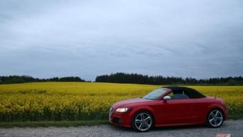 Holle SB -Audi TT-S