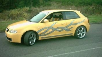 Sean -Audi S3