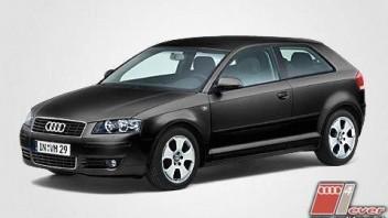Petasatus -Audi A3