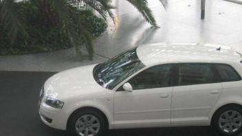 Dragontfc -Audi A3