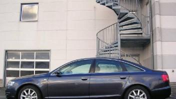 grizzler -Audi A6