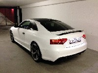 The Beast | carbon white RS5